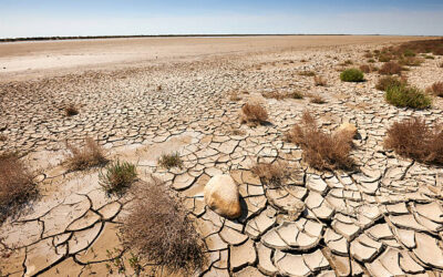 Día Mundial de la Desertificación y la Sequía